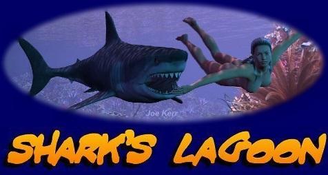 Sharks Lagoon